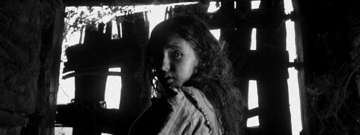 Dar-dar-Ikusgarri-Films_APIKA